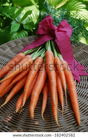 A bunch of fresh carrots on natural background  - stock photo
