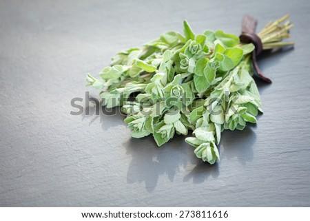 A bunch of fresh oregano on a dark stone background. Shallow DOF - stock photo