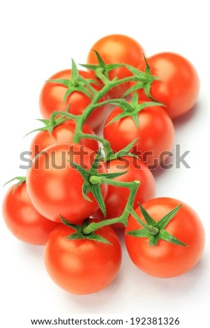 A bunch of freshly picked ripe cherry tomatoes. - stock photo