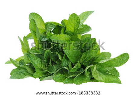 a bunch of mint isolated on white  - stock photo