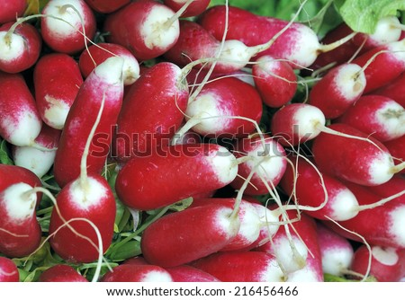 A bunch of radish at a farmer's market. Selective focus at the center. - stock photo