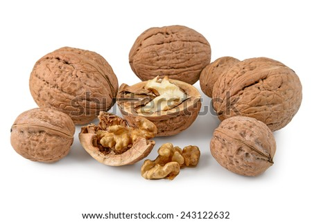 A bunch of walnuts on a white background - stock photo