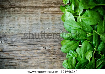 a bunch spinach leaves on a dark wood background. toning. - stock photo