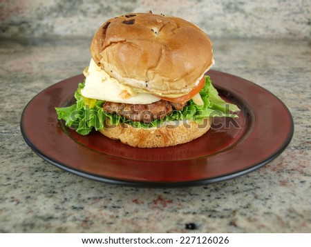 a burger sandwich with lettuce, tomato, onion, cheese, and mustard on a plate ready to be eaten - stock photo