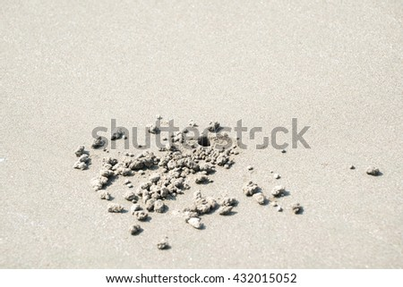 A burrow of crab - stock photo
