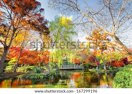 A burst of fall color with pond reflections - stock photo