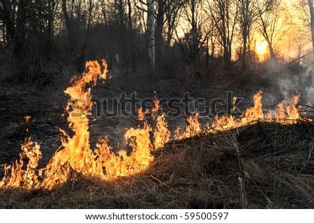 A bushfire burning orange and red at night - stock photo