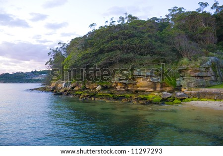 A bushy headland of scrub and sandstone on sydney harbour in the morning light - stock photo