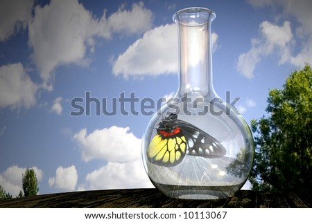 A butterfly in captivity in a flask - stock photo