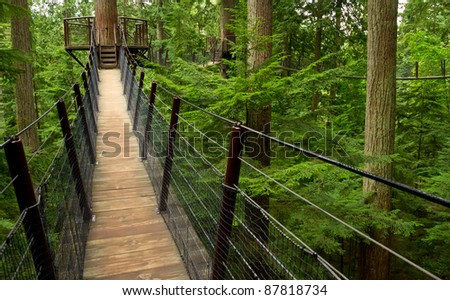 A cable suspension bridge above the coastal forest floor near Vancouver BC Canada - stock photo