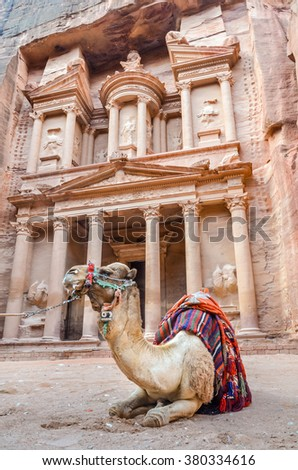 A camel (one hump dromedary) rests in front of the Treasury, one of the several temples in the ancient Nabatean city of Petra, Jordan - stock photo