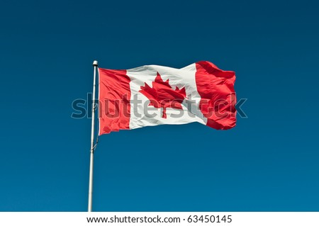 A Canadian flag waves in a strong breeze in front of a clear blue sky