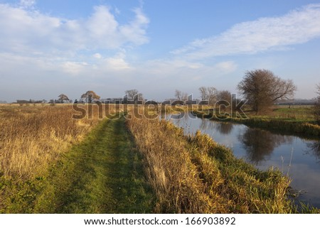 a canal with towpath trees hedgerows and dry grasses in yorkshire under a blue cloudy sky in winter