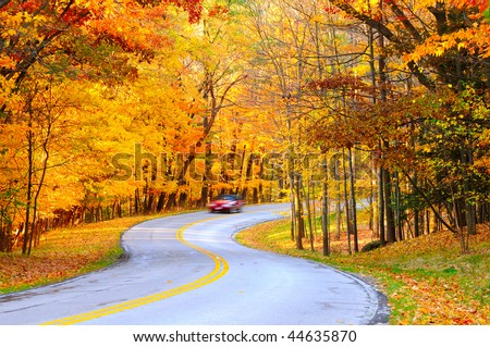 A car on curvy autumn forest road, with motion blur from its speed