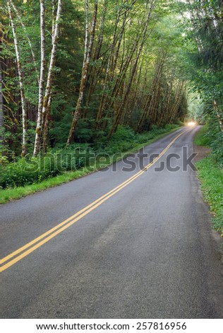A car uses headlights in the dense canopy of the Hoh Rainforest - stock photo