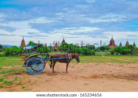 A carriage driver wait for his customer in front of temples in Bagan, Myanmar - stock photo