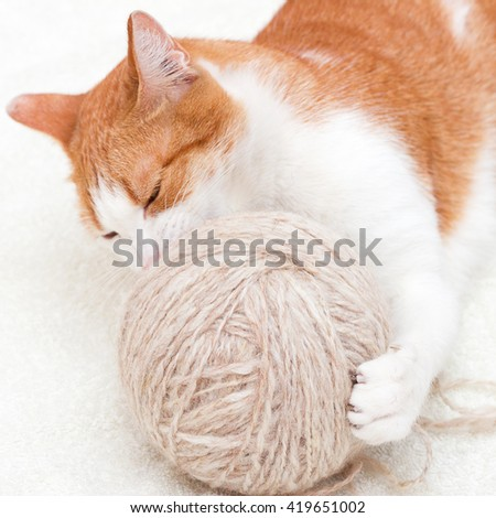 A cat and a ball for knitting