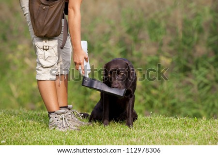 A Caucasian woman giving her thirsty brown labrador retriever female water to drink. - stock photo