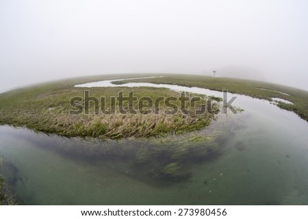 A channel winds through a salt marsh in a bay on outer Cape Cod, Massachusetts. Marshes are ecologically vital to the environmental health of this region. They are habitat for a diversity of life. - stock photo
