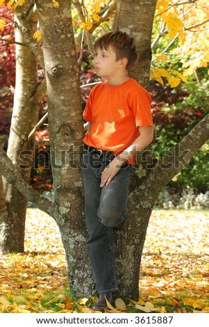 A child stands amongst the varying and colourful deciduous trees and leaves in the Autumn season
