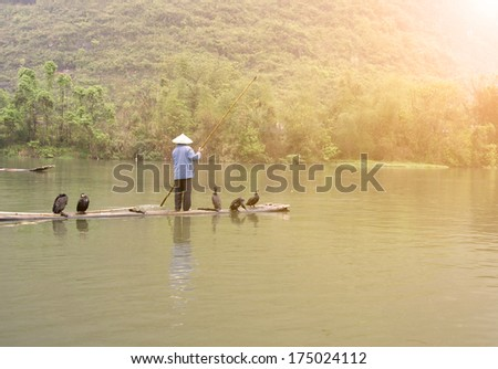 A Chinese fishermen and cormorants - stock photo