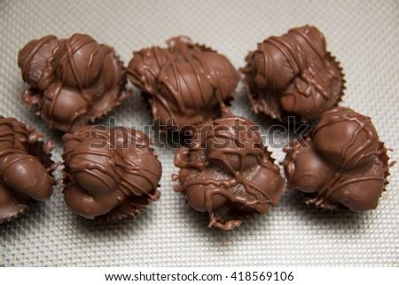 A chocolate macadamia nut fudge against background. - stock photo