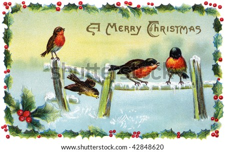 A 1913 Christmas card illustration of winter song birds surrounded by a frame of holly. - stock photo