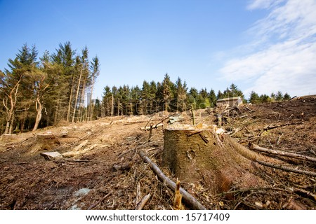 A clear cut block with a tree stump in the foreground