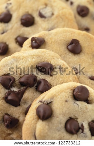 A close-up cropped image of yummy chocolate chip cookies - stock photo