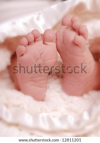 A close-up of a baby's feet - stock photo