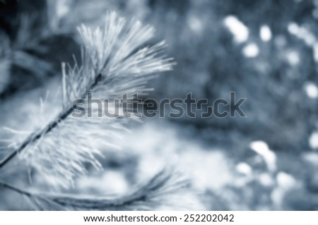 A close up of a branch of a coniferous tree in a blue and white winter style. - stock photo