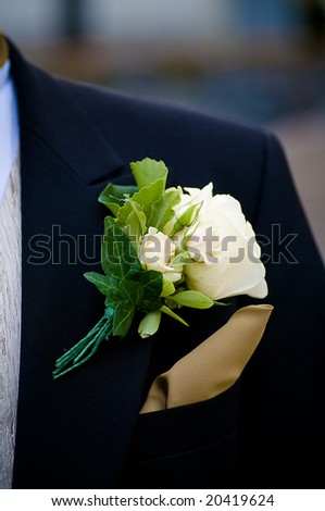 a close-up of a groom