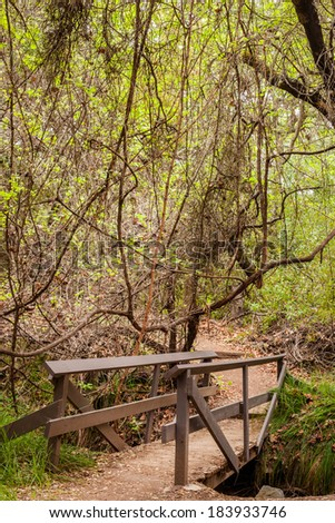 A close up of a small wooden bridge with green trees hanging over head. - stock photo
