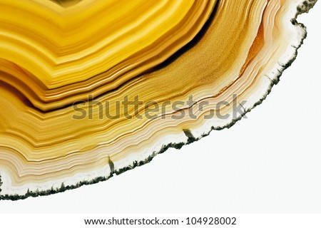 A Close-up of Slice of an Agate Gemstone Texture.