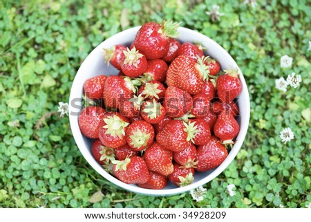A close-up superior view of fresh strawberries in a light blue bowl resting on a grass surface.