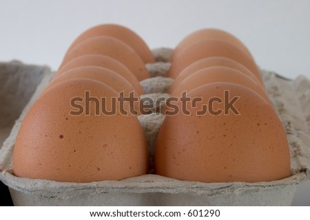 A close-up view of a carton of brown eggs, viewed from one end. - stock photo