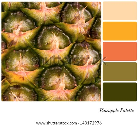 A closeup background texture of fresh pineapple,  in a colour palette with complimentary colour swatches. - stock photo