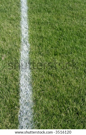 A closeup of a white line on a grass sports field.