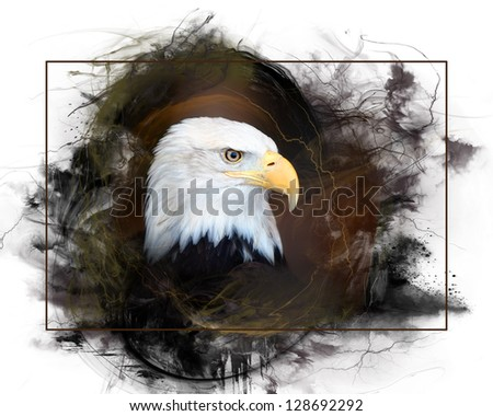 A closeup portrait of a Bald Eagle. - stock photo