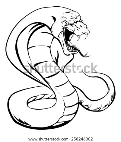 A cobra snake with hood up and tongue out about to strike - stock photo