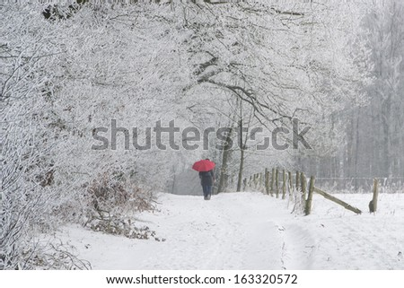 A cold winter day - stock photo