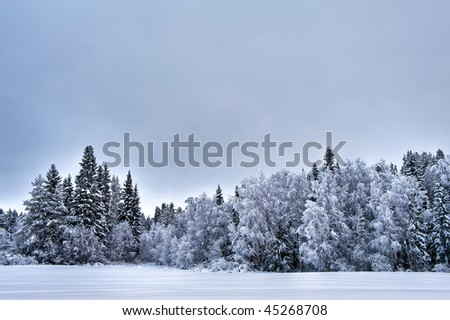 a cold winter scenery from the north of Sweden - stock photo