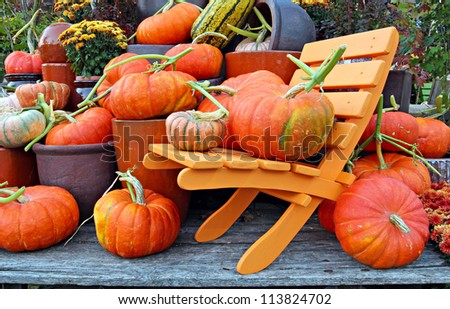 A collection of fall pumpkins - stock photo