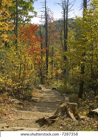 A colorful hiking trail in the woods of Shenandoah National Park, West Virginia. - stock photo