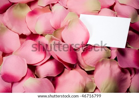 A composition of rose petals (cloth) with white card - stock photo