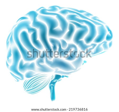 A conceptual illustration of a glowing blue human brain. Could be a concept for a brainstorm or intelligence - stock photo