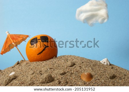 A cool orange chills at the beach in the Florida sunshine. - stock photo