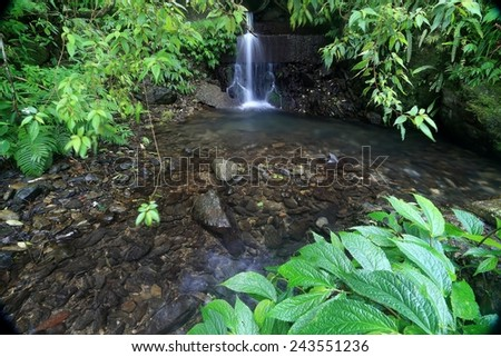 A cool refreshing waterfall hidden in a mysterious forest of lush greenery - stock photo