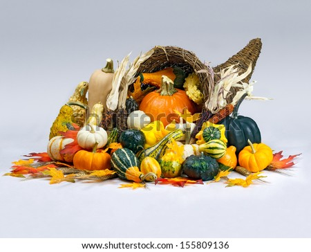A cornucopia is overflowing with an abundant bounty of pumpkins, gourds, squash, and Indian corn with wheat and colorful fall leaves on a white background.  - stock photo