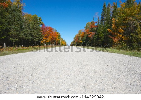 A country road framed by brilliant autumn colored trees, wide angle. - stock photo